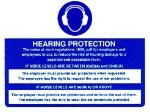 Hearing Protection : Noise At Work Act